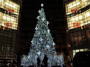New York City Holiday Lights Tour Photos