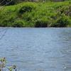 North Branch Kishwaukee River Illinois