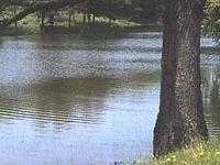 Nyirmedi - Lake