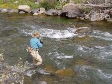 Nymphing Gardner River - Angling - Yellowstone - Wyoming - USA