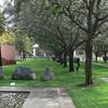 Nasher Sculpture Garden