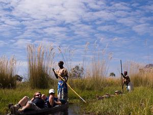 Okavango Delta Safari Photos
