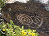 One Of Many Petroglyphs In South Mountain Park