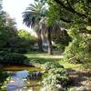 El Jardín Botánico de Pisa