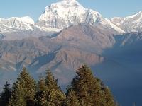 Ghorepani Poon Hill Trekin Nepal