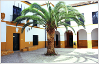 Palace Of The Munices Family