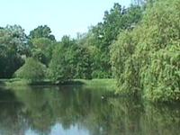 Park Wolnosci of Julius Peppel
