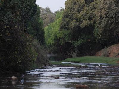 Pendjari River
