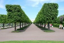 Petrodvorets - Peterhof Palace - St. Petersburg