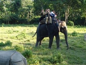 Nepal Jungle Safari Photos