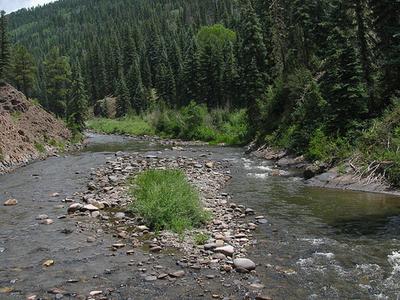 Piedra River Colorado