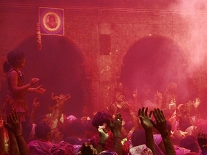Viator Exclusive: 2-Day Holi Festival Experience In Mathura From Delhi Photos