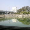 Pond Near ISKON Temple
