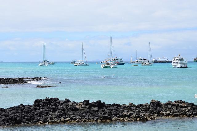 This Summer Follow us to Galapagos Photos