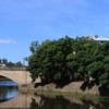 Lennox Bridge
