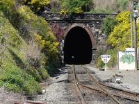 Lyttelton Tunnel Rail