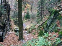 Reservation of Cicha Dolina