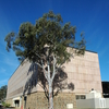 R. G. Menzies Building
