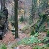 Route Through Gorge Of Złoty Potok