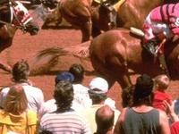 Ruidoso Downs Race Track