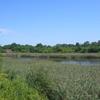 Ridgewood Reservoir