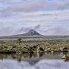 Sanetti Plateau - Ethiopia