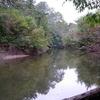 Seneca Creek