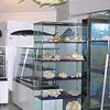 Seychelles Museo de Historia Natural