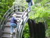 A Decorative Moon Bridge In The Tea Garden