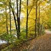 Sharon Woods Metropolitan Park