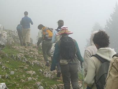 Singalila National Park Trekking