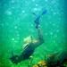 Snorkeling The Belize Barrier Reef