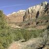 Southwest Desert Trail - Zion - Utah - USA