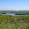 Srebarna Nature Reserve