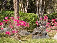 Sri Nakarins Park