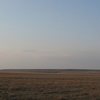 Steppe Of Western Kazakhstan In The Early Spring