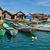 Sulawesi Fishing Boats
