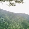 Konjuh Mountain