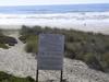 Surf Beach Rules