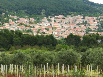 Smokvica Town