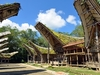 Tana Toraja Traditional Houses - Sulawesi
