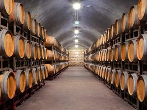 Tarragona Imperial & Cava Cellars Photos