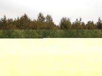 Tatárszentgyörgy Landscape Protection Area