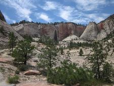 Telephone Canyon Trail - Zion - Utah - USA