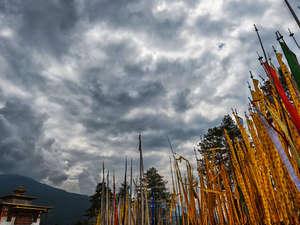 Bumthang Owl Trek Photos