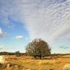 The Rutka Landscape Reserve