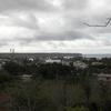 The Skyline Of Puerto Ayora.