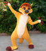 Timon Disneys Animal Kingdom