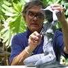 Tom Bower Studio de Esculturas