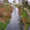 Town Brook